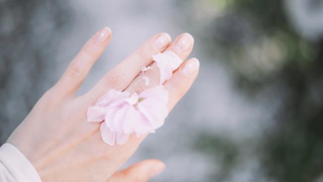 透明感ある肌の女性の手