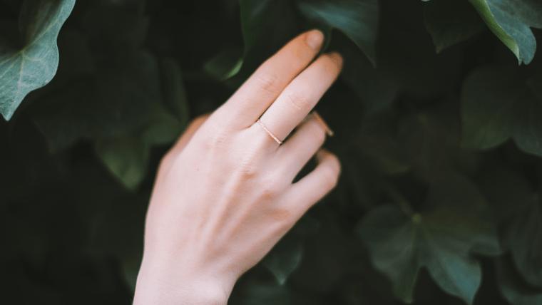 木の葉に触れる女性の手