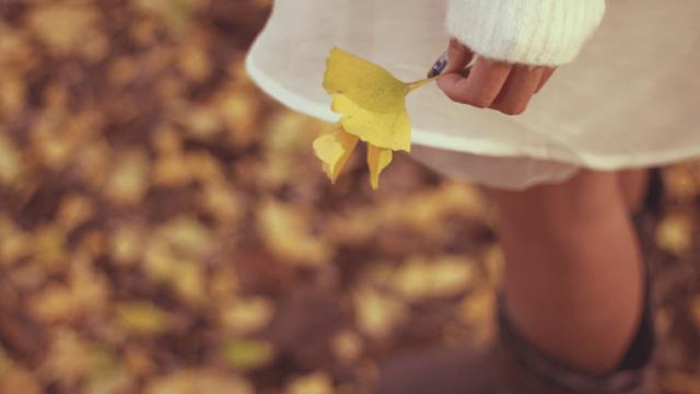 銀杏の葉っぱを持つ女の子